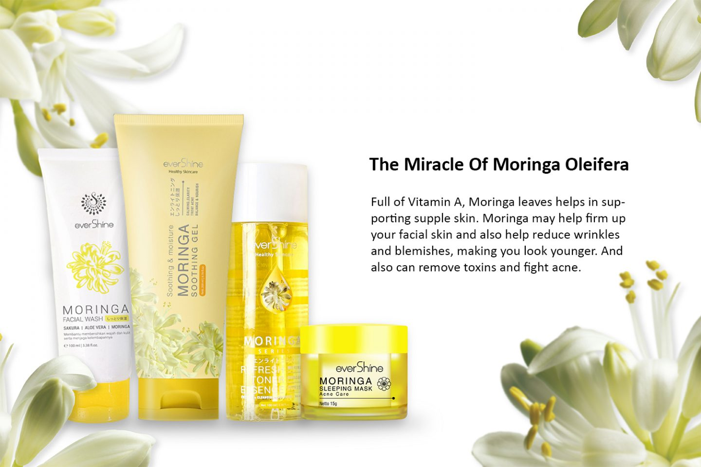 MORINGA SERIES Products by Evershine